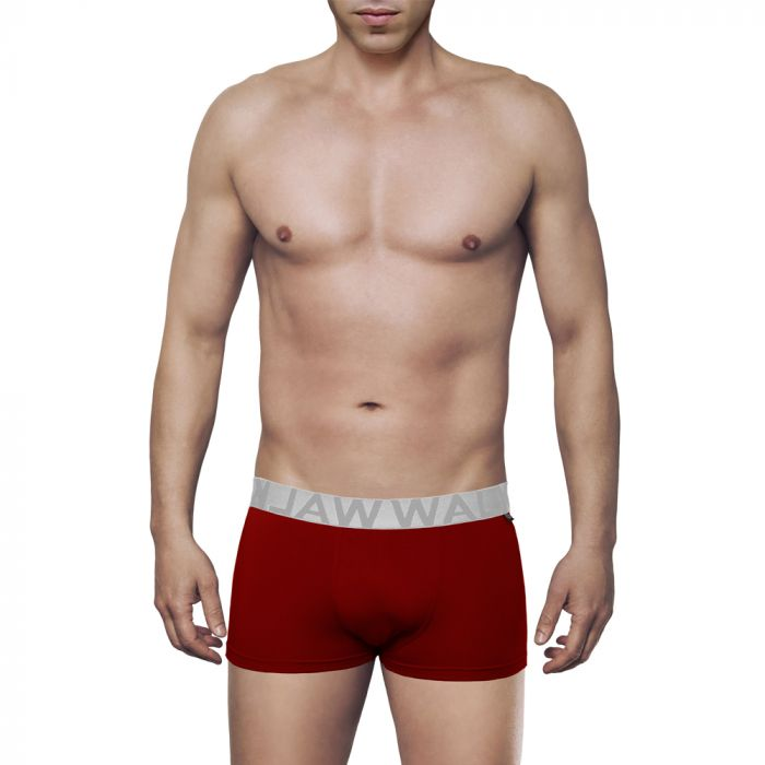 Walk Boxer Bamboo Brief W1770